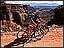 Utah Mountain Bike Tours